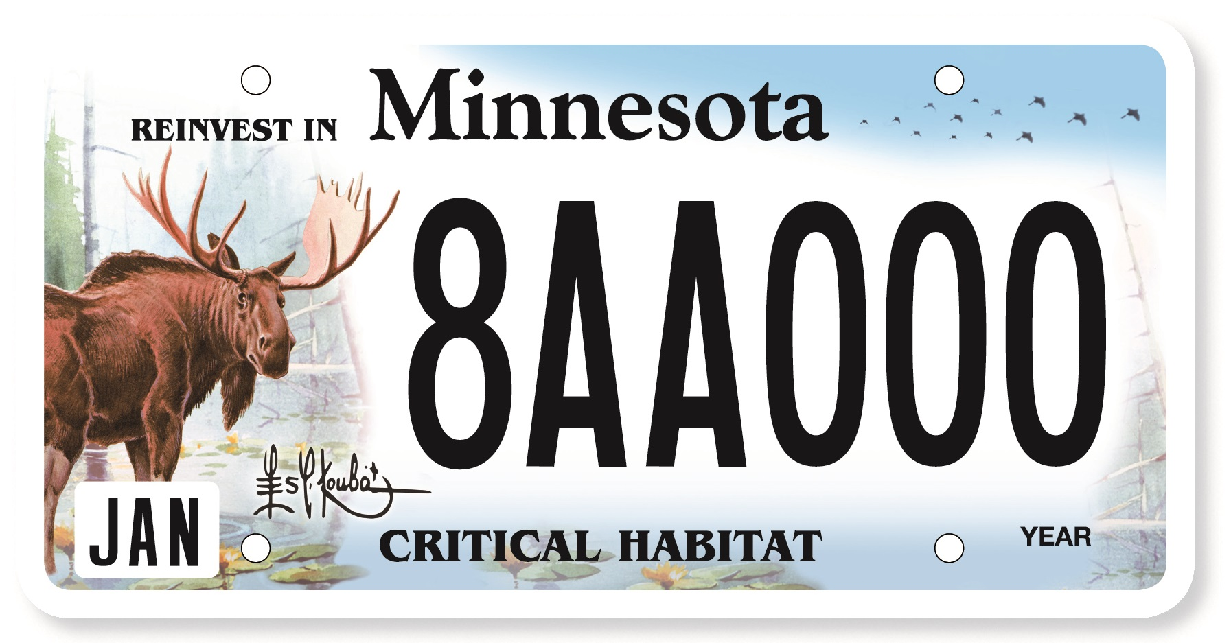 vehicle license plate renewal application